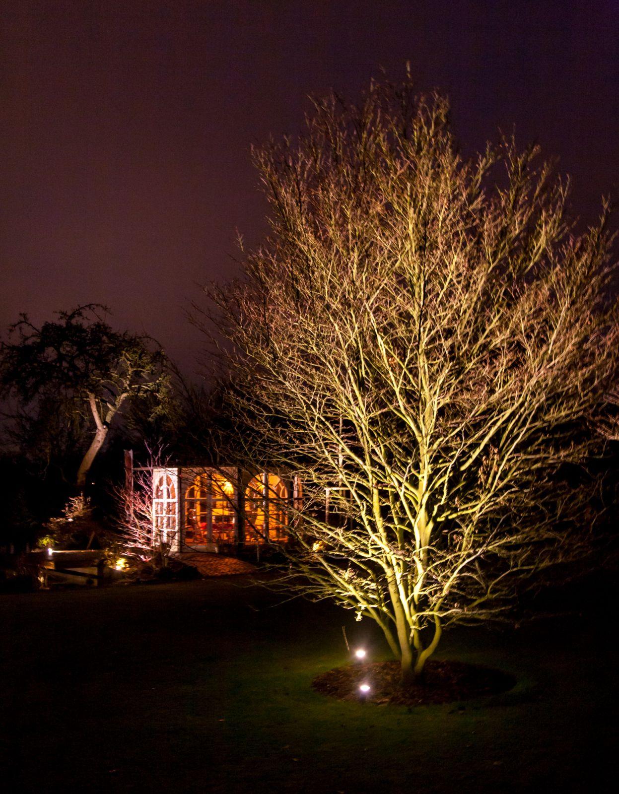 Nächtliche Gartenbeleuchtung | Vogel Garten- und ...